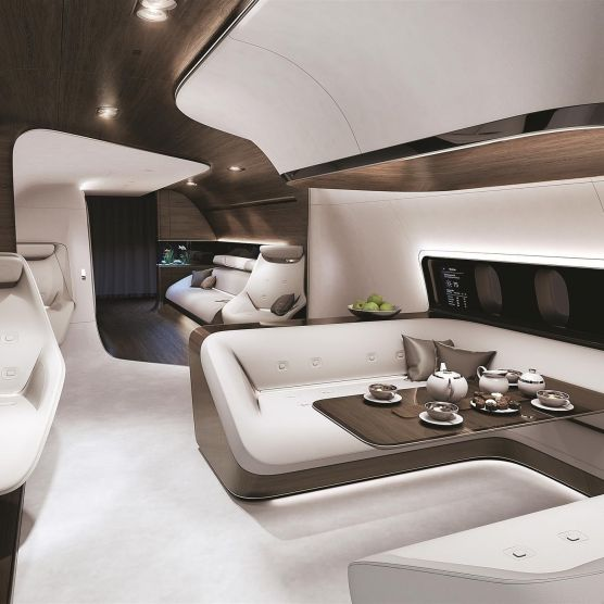 Luxury Private Plane Design